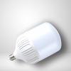 100 watt LED Bulb